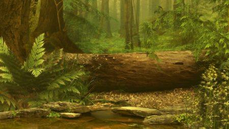 wood, log, pond