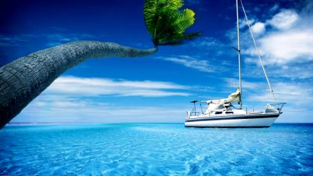 yacht, palm tree, blue water