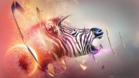 zebra, head, bands